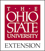 Workshop facilitator for a team from The Ohio State University